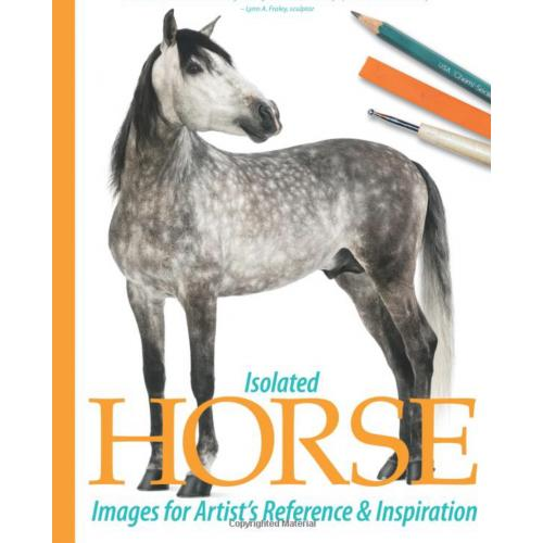 Isolated Horse Images for Artists' Reference and Inspiration