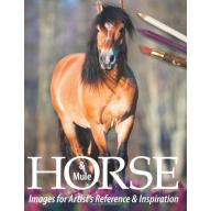 Horse and Mule Images for Artists' Reference and Inspiration