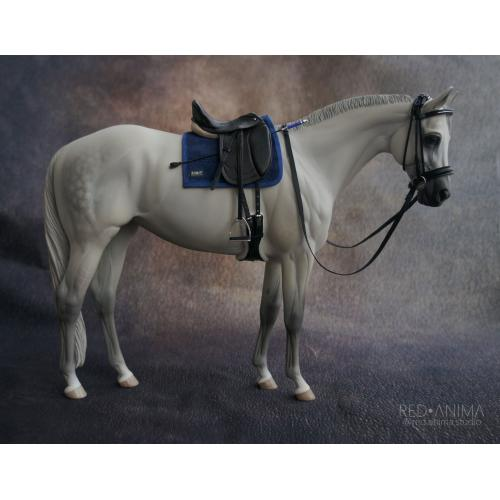 Top LSQ dressage set